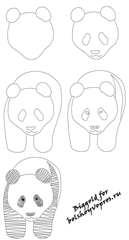 Нарисовать панду своими руками фото 968
