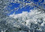 загадка про снег