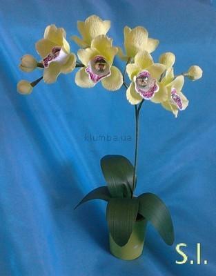Как сделать орхидеи из бумаги для конфет