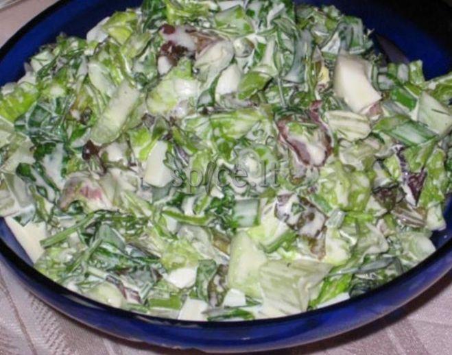 Какой салат можно сделать из редьки 159