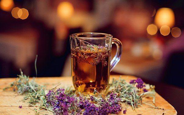 можно ли пить чай при похудении