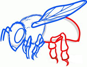 нарисовать пчелу 8