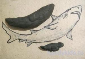 Как сделать акулу из пластилина