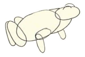 как нарисовать лягушку 1