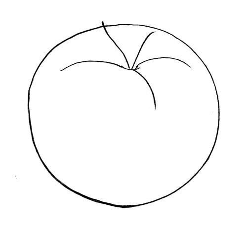 Как нарисовать помидор поэтапно ребенку