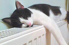 Какая температура должна быть в квартире