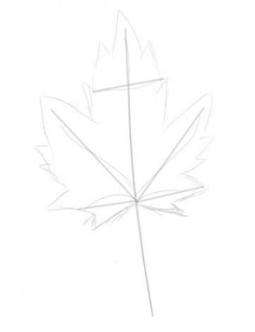 как нарисовать листья 1