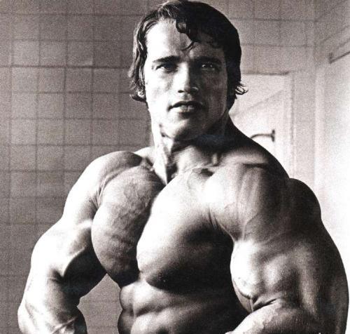 Принимал ли шварценегер анаболики стероиды для роста мышц цена украина
