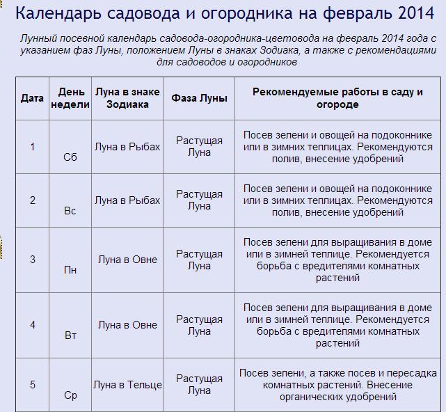 Ярмарка выходного дня покупай ставропольское