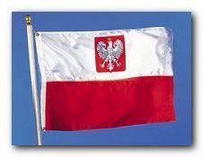 Что и где выгоднее всего покупать в Польше?