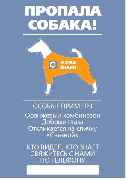 Объявление Найдена Собака Образец - фото 10