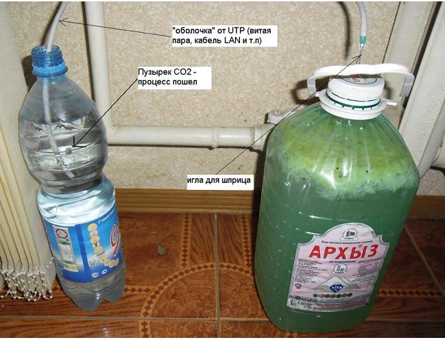 Как приготовить тонизирующий напиток из имбиря