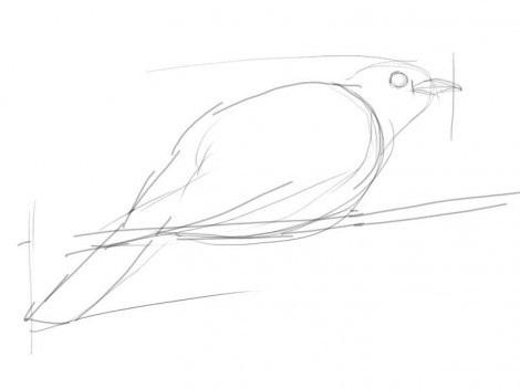 как рисовать кукушку