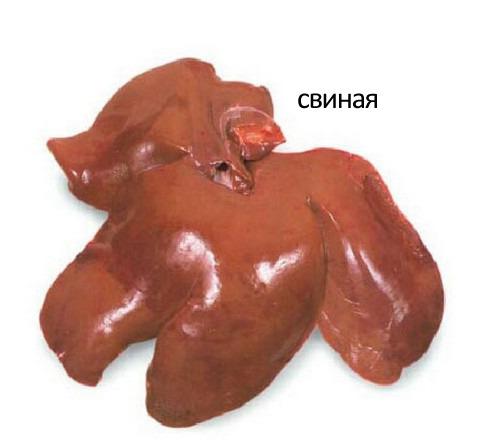 чистить печень от паразитов народными средствами