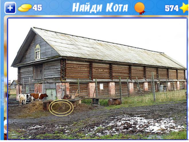 Как построить скотный двор своими руками 55