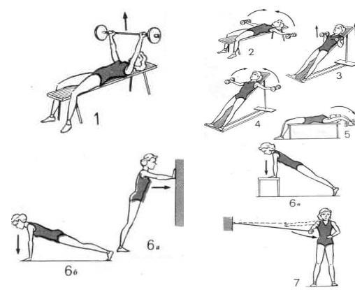 Упражнения для увеличить грудь в домашних условиях