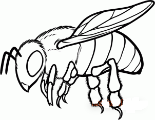 нарисовать пчелу 10