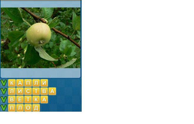 Приложения для изучения английского языка для iPhone  iPad