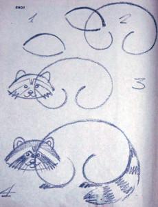 Как нарисовать енота-полоскуна карандашом поэтапно?