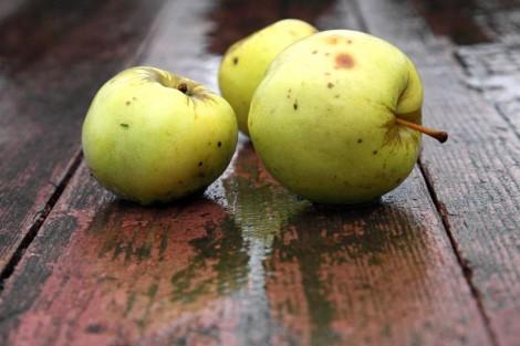 Натюрморт карандашом поэтапно яблоки