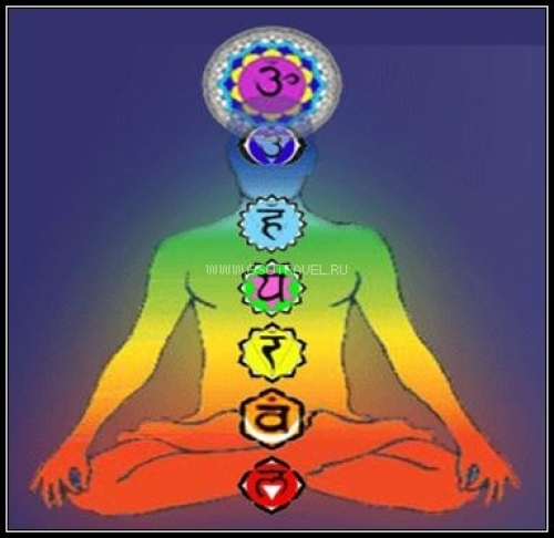 eroticheskiy-massazh-otkritie-svadhistani-chakri