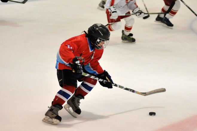 Как играть в хоккей