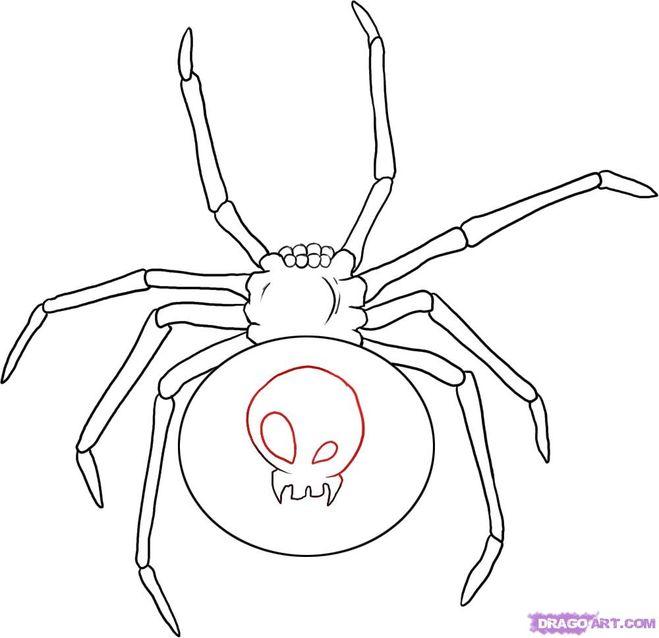 Паука можно раскрасить и