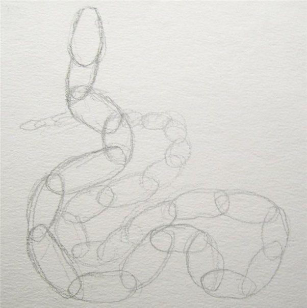 рисуем змею 1