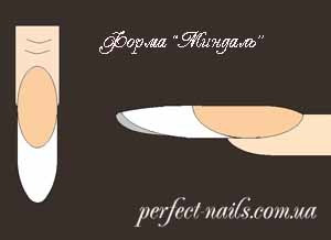 Какие формы ногтей бывают