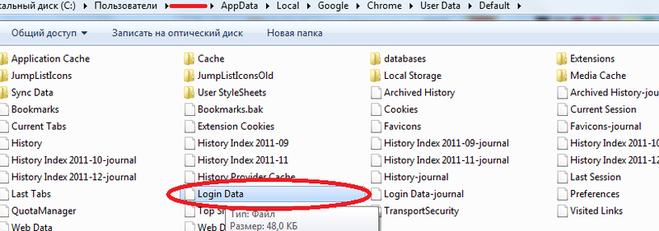 где Google Chrome хранит пароли - фото 10