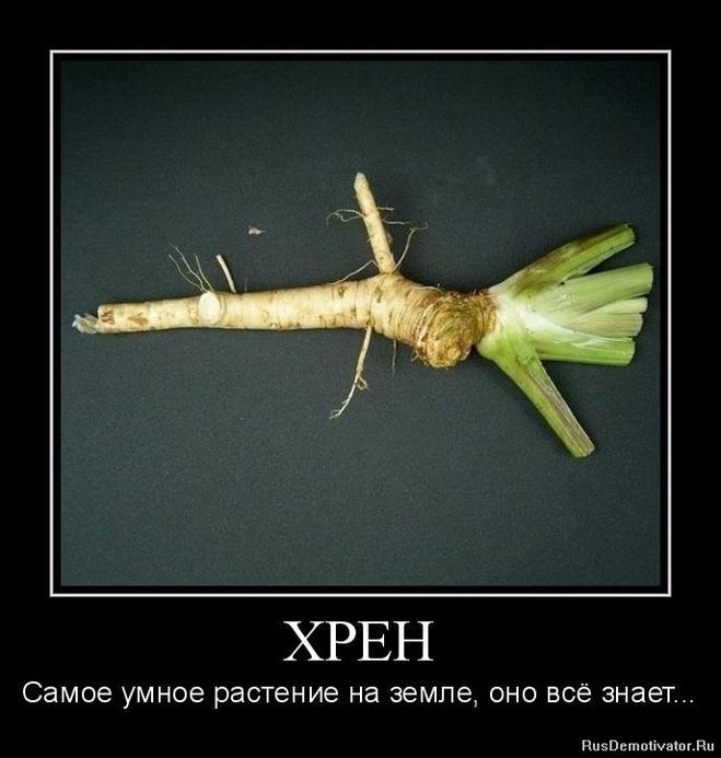 Частное фото голых русских мужиков