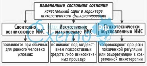 goliy-muzhchina-bez-trusov