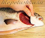 Жабры какого цвета у свежей рыбы
