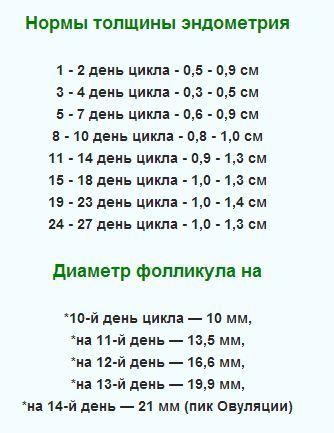 Эндометрий по дням цикла норма мм