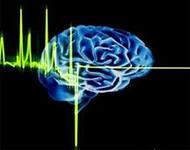 о том почему умственные упражнения стимулируют мозг локально, а оргазм  активирует целиком