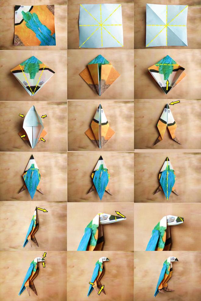 создании попугая из бумаги