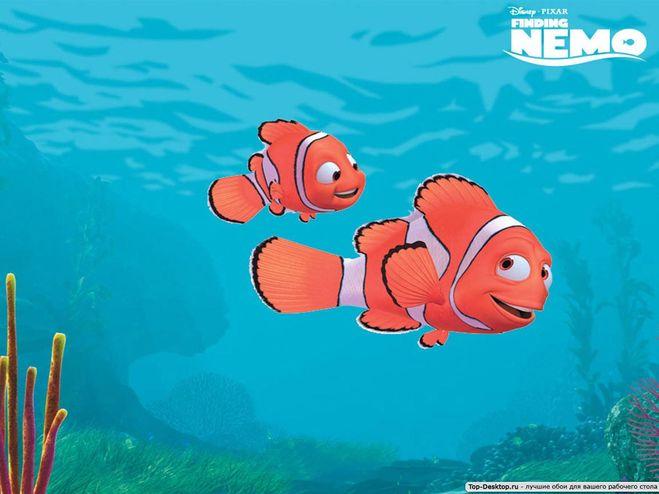 Как зовут рыбу из в поисках немо игра про губка боб 7