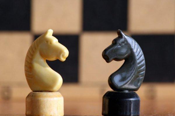 Есть особенное право у коня почти закон
