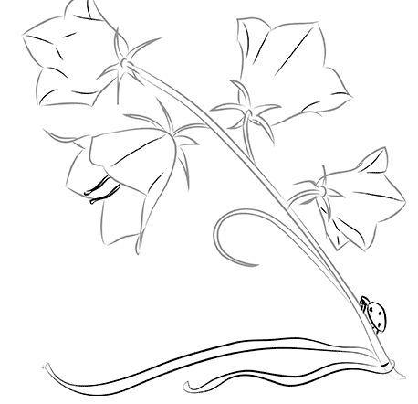 Шрифты на NanoPics: как нарисовать цветок ...: fonts-pictures.nanopics.ru/category/как_нариÑ...