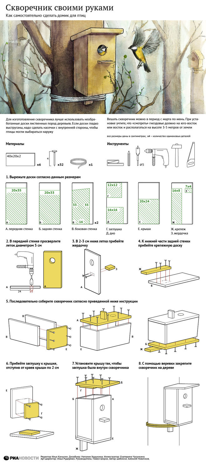 Как сделать скворечник Инфографика в Подмосковье