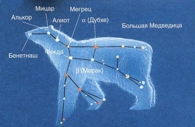 большая и малая медведица созвездие картинки
