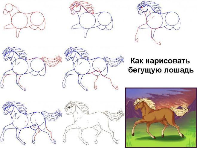 Так можно нарисовать лошадь во