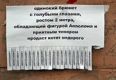 газета вабанк как разместить объявление о продаже участка