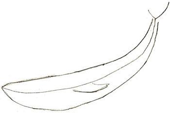 рисовать кита 2