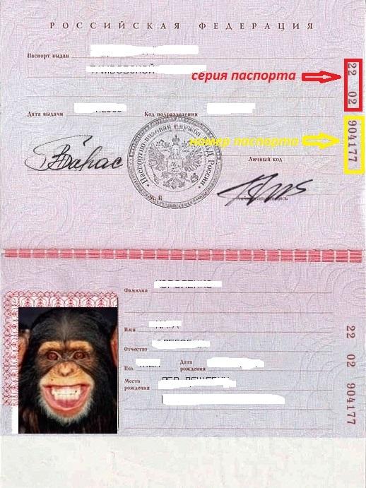 россии серия фото паспорт номер