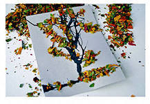 Аппликация и поделки из сухих листьев